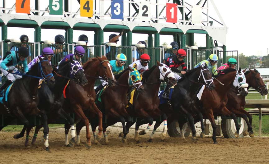 Maryland Million