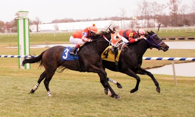 Northern Eclipse shines in Laurel Park feature win