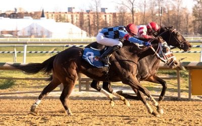 Unbridled Daddy holds on for third straight win
