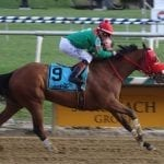 Afleet Willy strong favorite in Campbell