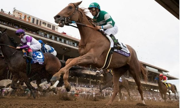Stellar Wind posts sharp breeze prepping for Pegasus