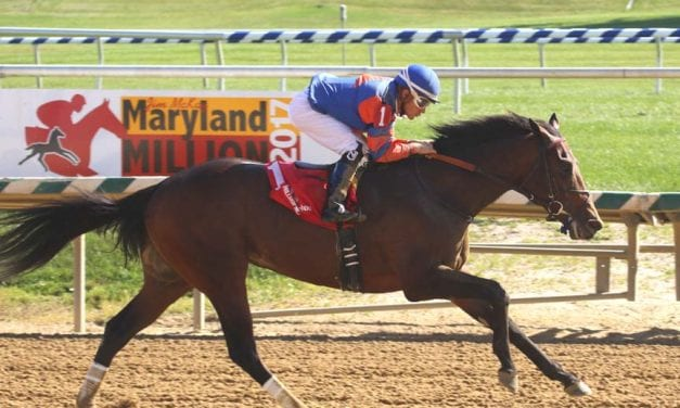 Clever Mind looks for second stake win in Md. Juvenile Futurity