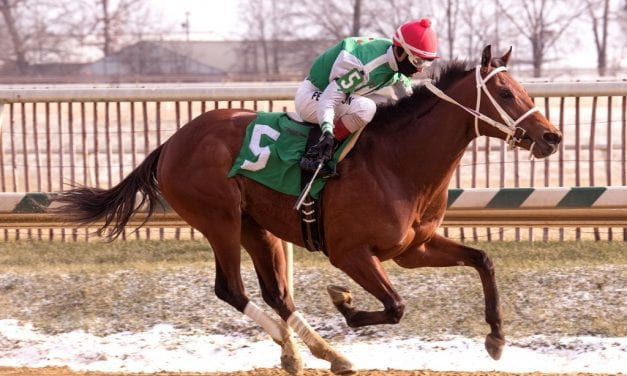 Diamond King rules in Heft victory