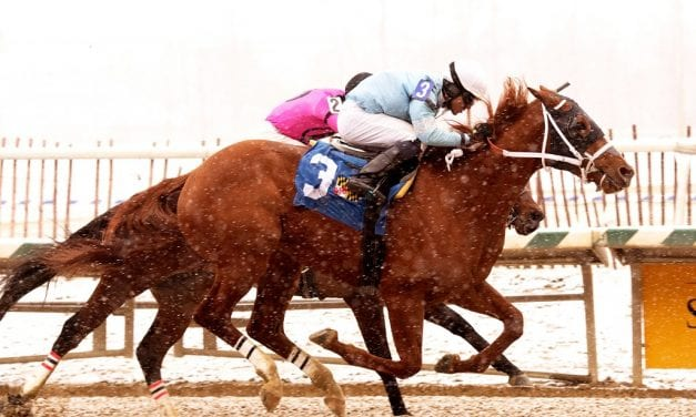 Whirlin Curlin: Time, gelding, and now, a bright future