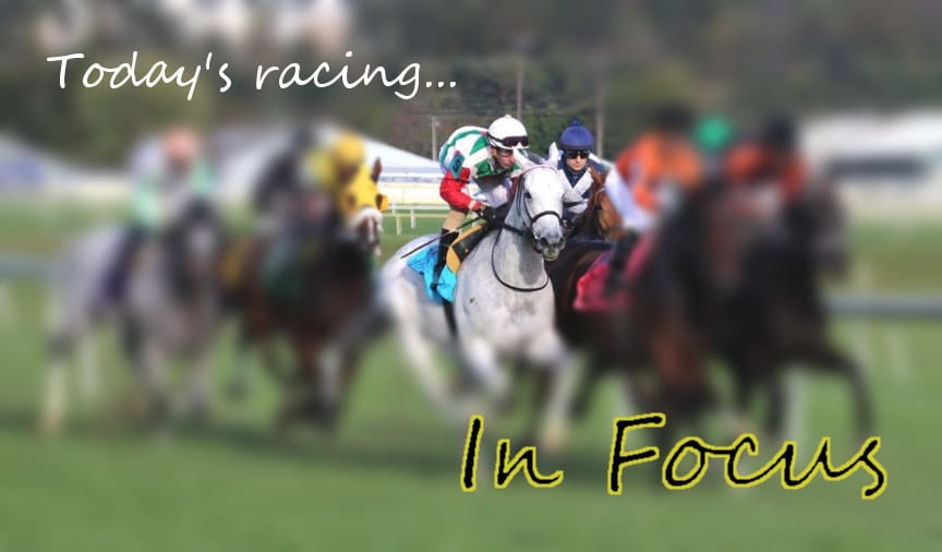 In Focus: Wagering weekend MATCH races