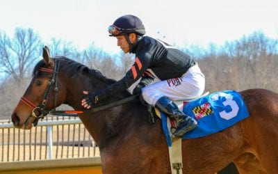 Jan. 27 Laurel Park stakes: Day in photos