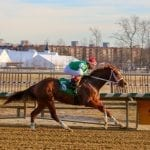 Ms. Locust Point looks for 4th Laurel stakes win in G2 Fritchie