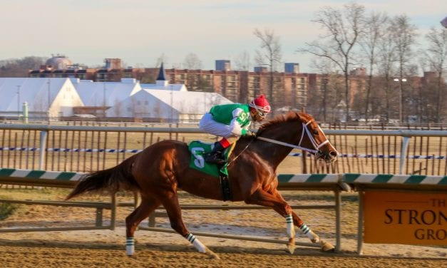 Ms Locust Point romps to popular What A Summer victory