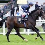 Royal Artillery, Almasty join Pin Oak Lane stallion roster