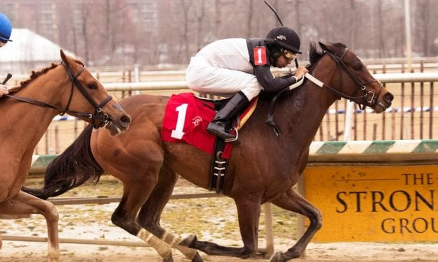 Finding Perfection finds maiden win at Laurel Park
