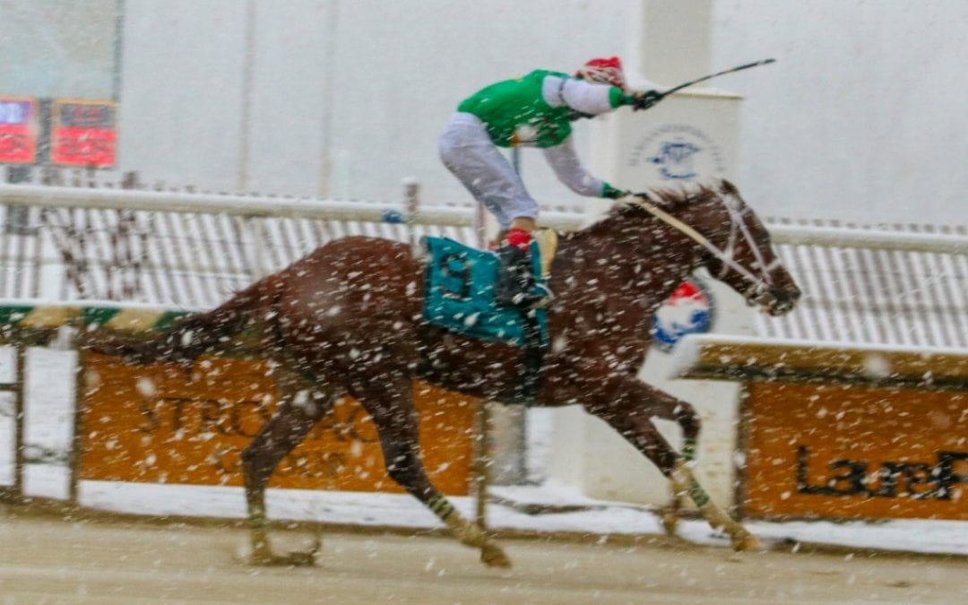 Maryland Jockey Club offering incentives for graded winners