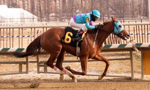 Talent no secret as Rumor Ridge powers to maiden win
