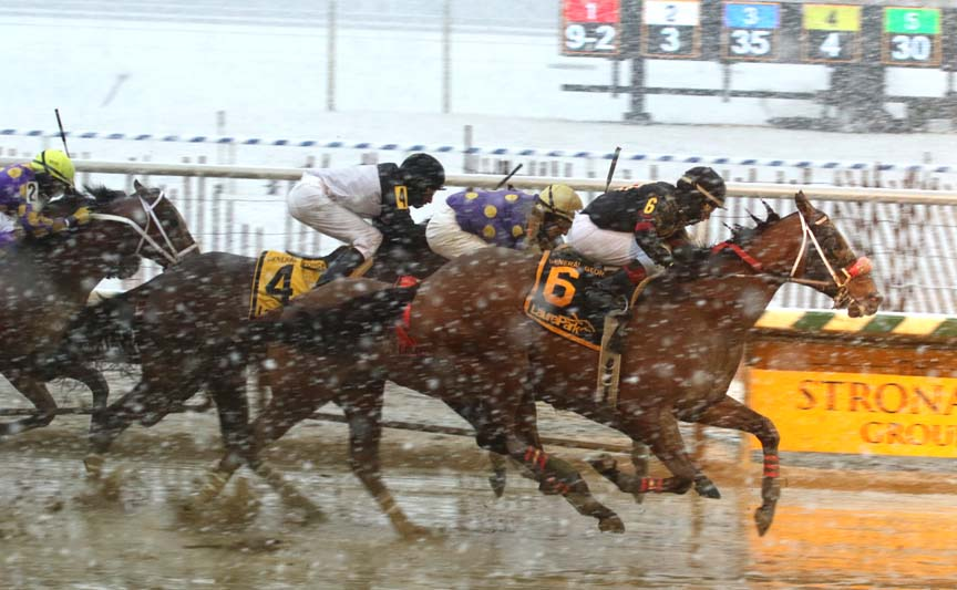 Laurel Park: Picks and ponderings Jan. 11, 2019