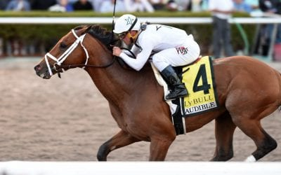 Audible jumps up in newest NTRA Top Thoroughbred Poll