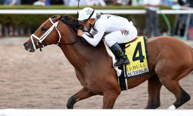 Audible favored in Florida Derby Saturday