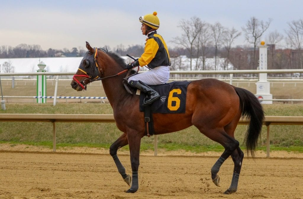 Jockey Jose Flores dies of injuries after Monday spill
