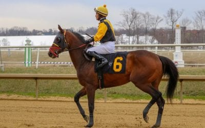 Jockey Jose Flores fighting for life after Parx spill