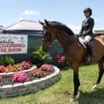 Totally Thoroughbred show pushed back to October
