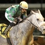 For trainer Hanagan, getting a Court Date pays off