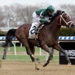 Army Mule heads latest Top Midlantic-bred Poll