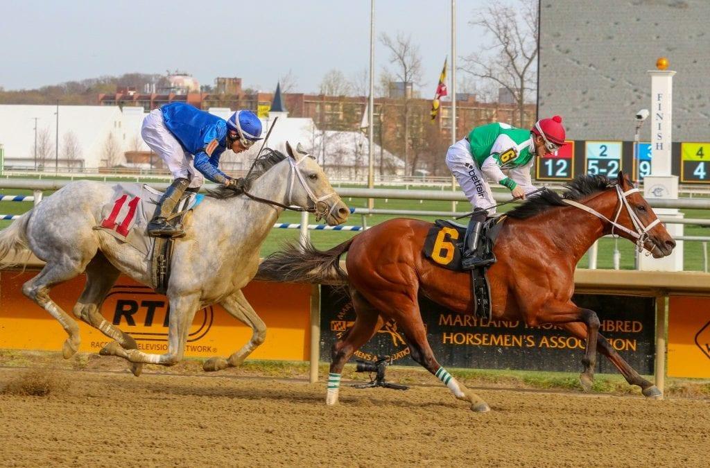 Tesio Stakes win makes Diamond King Preakness-bound