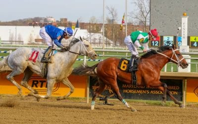 Tesio Stakes tops Laurel Park Labor Day card
