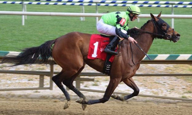Goodonehoney among newcomers to Top Midlantic-bred Poll