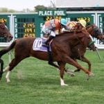 Meadowlands cancels Friday all-turf card