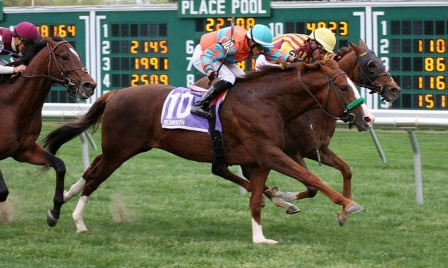 G1 winner Force the Pass retired to stud in Maryland