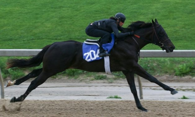 """Fasig-Tipton: Opening session """"solid"""" as More Than Ready colt stars"""