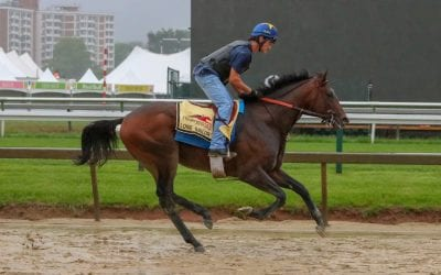 Haskell: Lone Sailor makes six