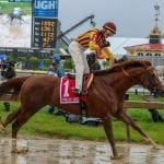 Irish War Cry to stand at Northview in 2019
