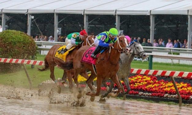 Vertical Oak sweeps to Skipat Stakes win
