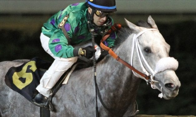 Court Date gives trainer Hanagan first stakes win