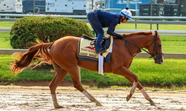 "Preakness: Good Magic ""ready"" to turn tables"