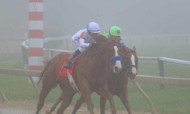 Preakness day at Pimlico in pictures