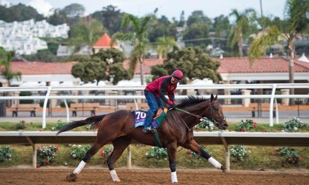 GQ: 2018 Kentucky Derby horse-by-horse