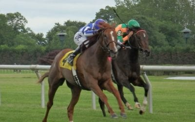 Delaware Park Racing Notebook 2018: Vol. 6