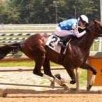 Miracle Wood launches local route to Preakness