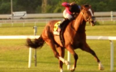Hawkish flies to Penn Mile victory