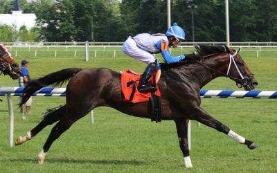 Edward Evans Stakes: Sticksstatelydude bred — sort of — by Bud