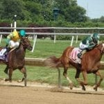 """For trainer Anthony Margotta, """"a long way into the woods, a long way out"""""""