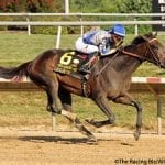 Elate returns from layoff to dominate Delaware Handicap