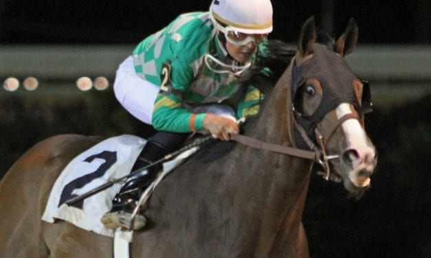With Natural Odds, trainer Kolb hoping for productive summer