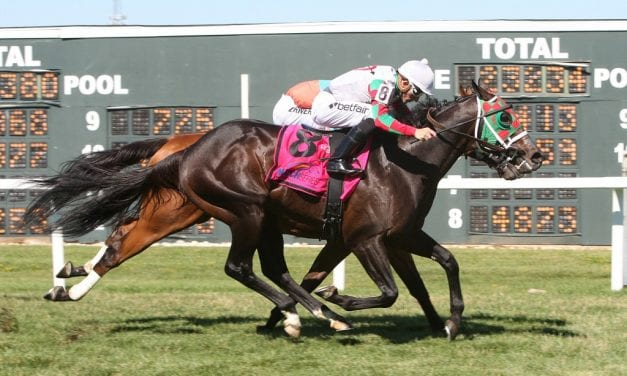 MATCH Series: Smiling Causeway, Vision Perfect score in turf sprints