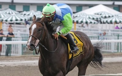 MATCH: In-foal Amapola storms to Incredible Revenge win