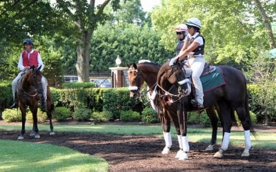 Delaware Park Handicappers' Notebook 2019 Vol. 20
