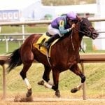 Lookback: No turf, no problem in Virginia-bred stakes