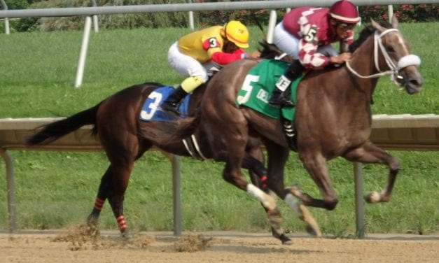 Tom Creel named Delaware Park racing secretary