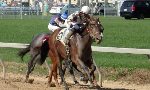 Timonium: Gerald Almodovar logs win 2,000